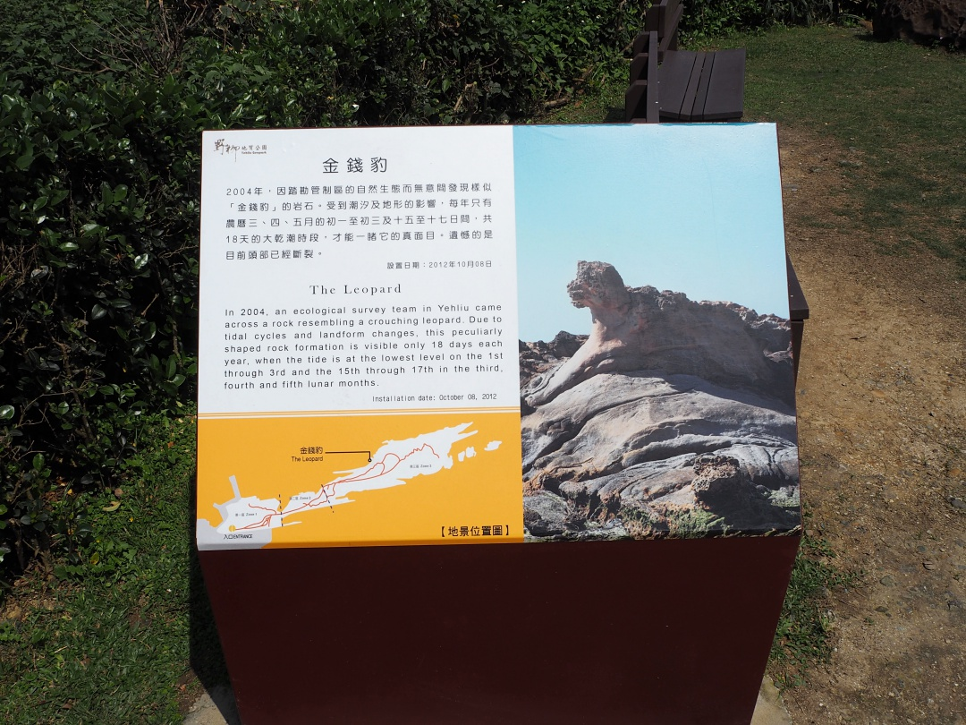 Taiwan Yehliu Geopark 野柳地质公园 The Leopard | joanne-khoo.com